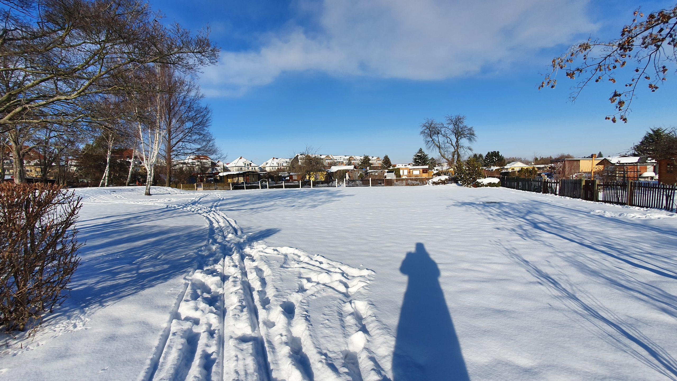 Winter 2021 (10)